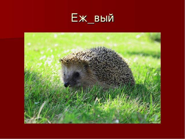 Еж_вый