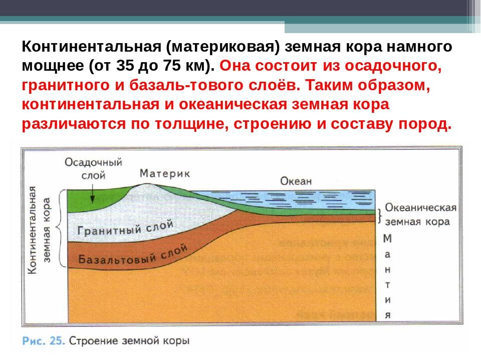 строение земной коры с картинками этому всему