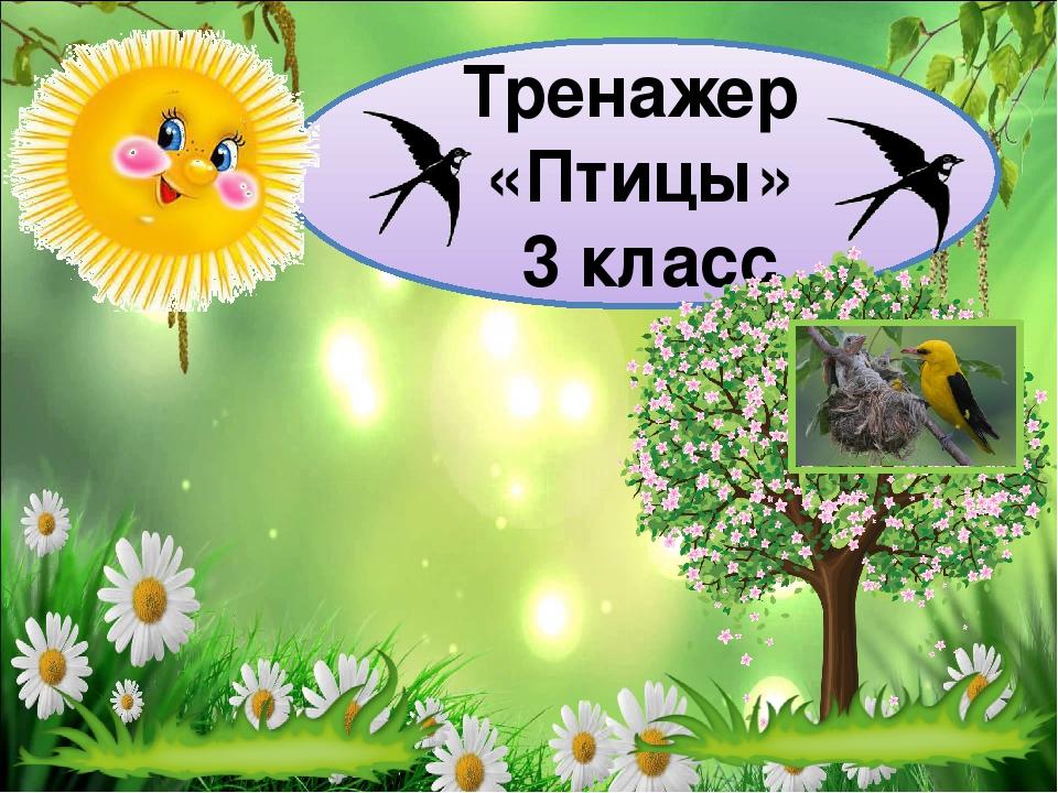 Тренажер «Птицы» 3 класс