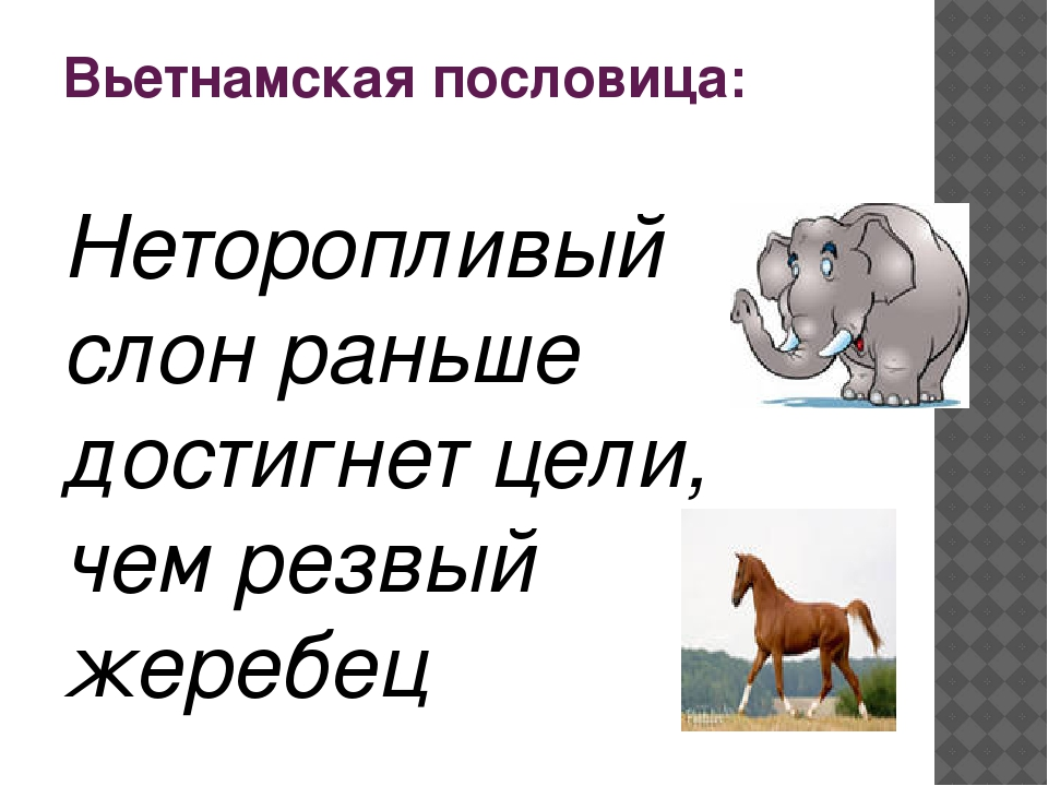 Русский вариант: Конь о четырёх ногах, и тот спотыкается