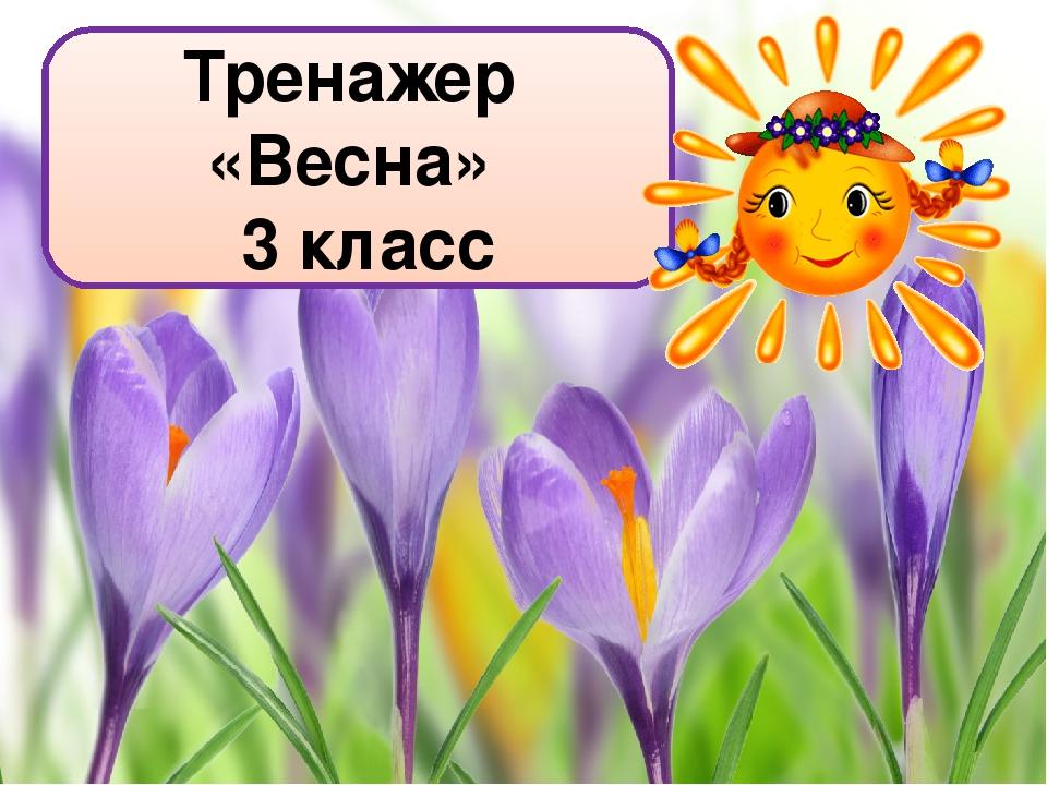 Тренажер «Весна» 3 класс