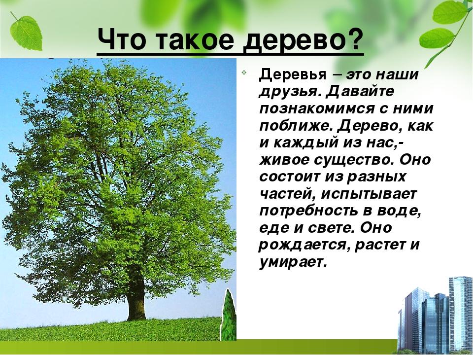 интересны рассказ о дереве с картинками юбке тут