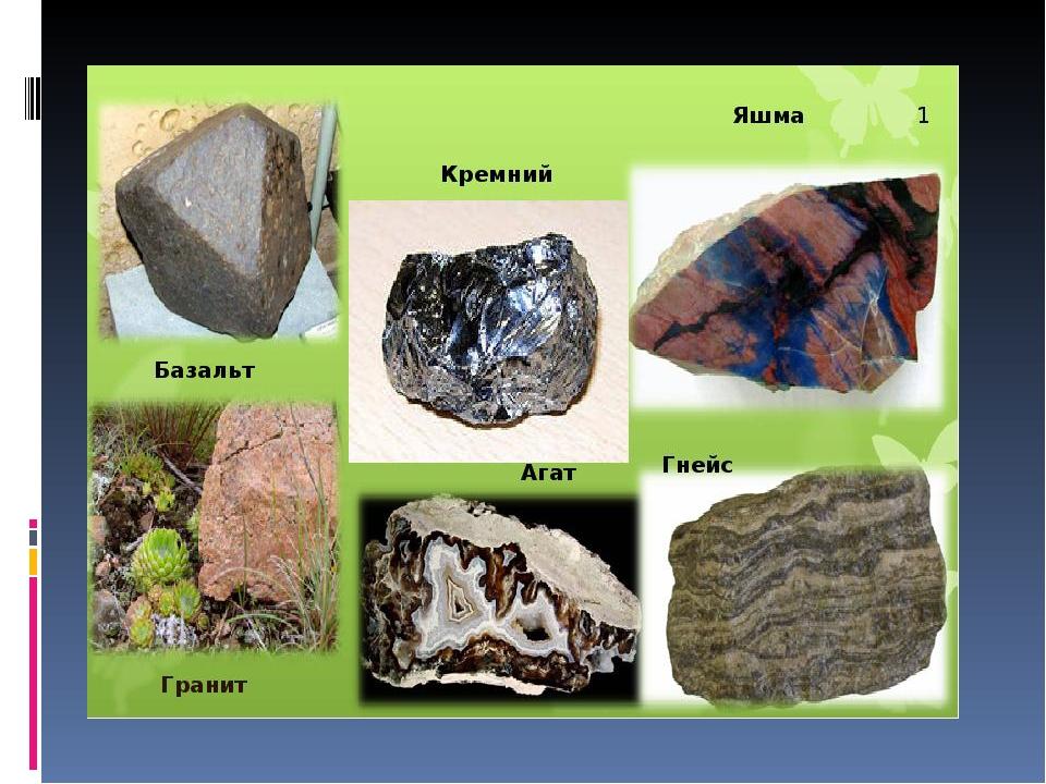 очкастая девчушка камни полезные ископаемые фото и название вот