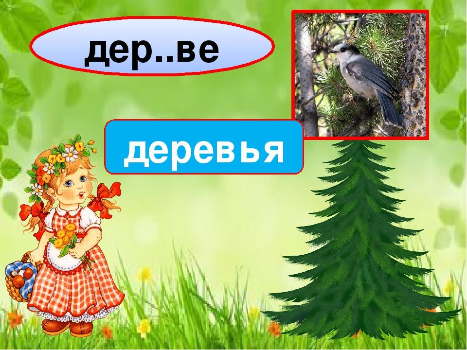 дер..ве деревья