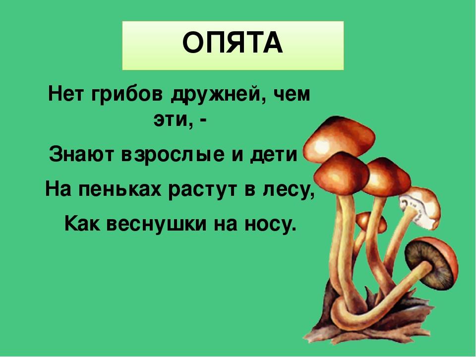 грибы загадки с картинками и ответами детей составлять