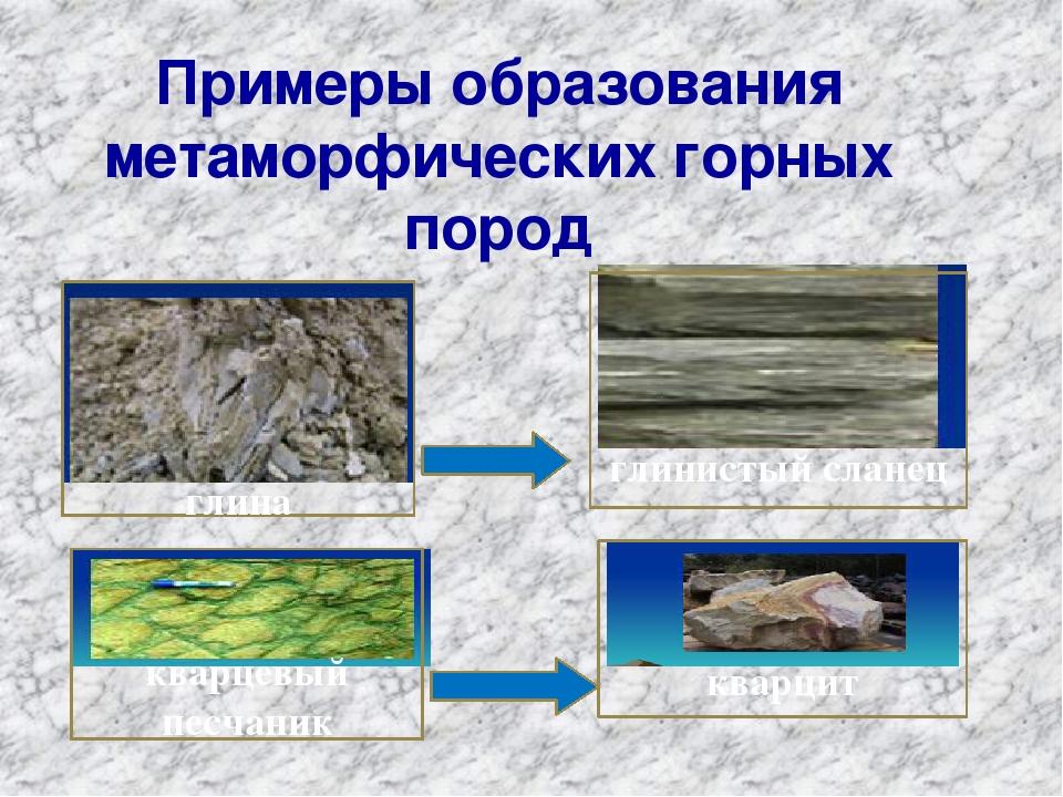 Примеры образования метаморфических горных пород глина кварцевый песчаник гли...