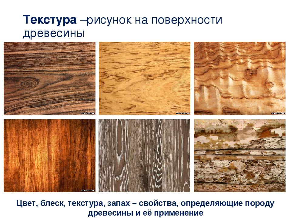 данном картинки на тему свойства древесины необходимые