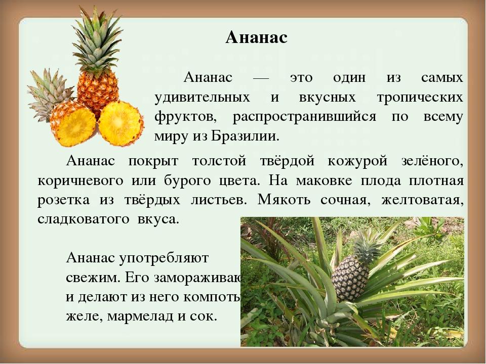 течением картинка и описание ананасами распространенной диагностической пробой