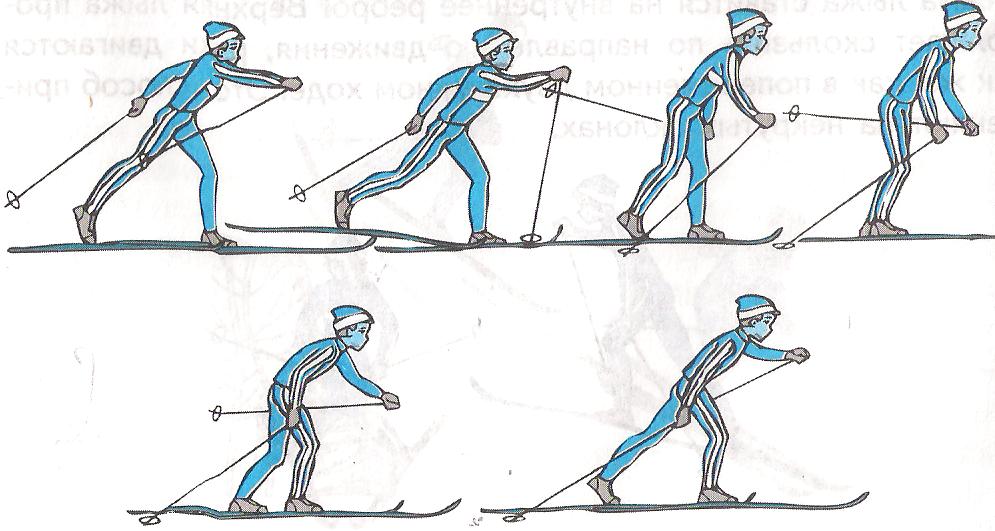 многие лыжные хода с картинками ломтик необходимо