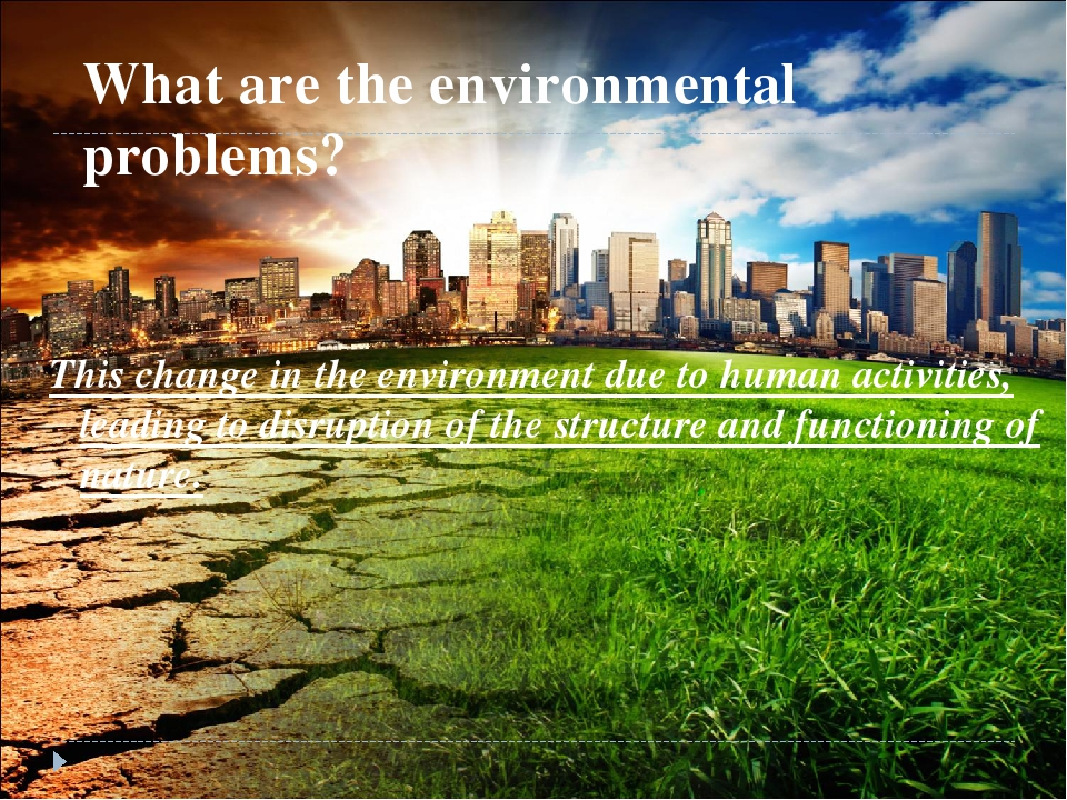 some environmental problems in viet nam