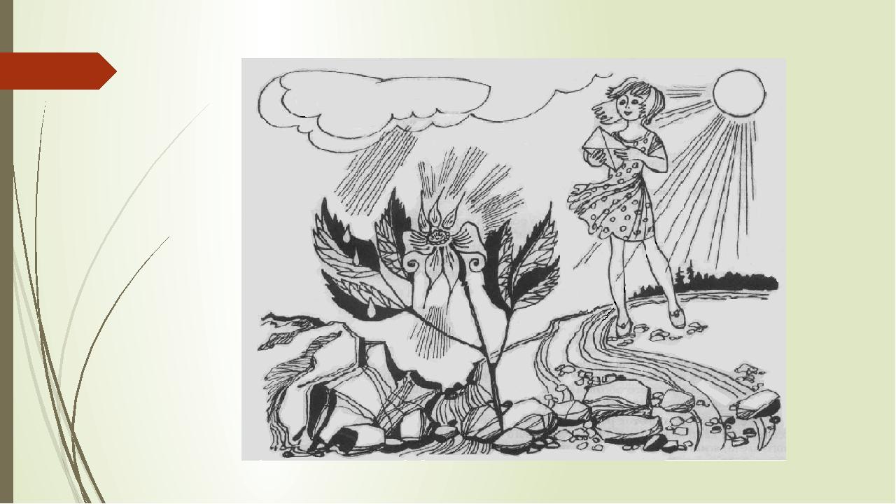 Рисунки к рассказу неизвестный цветок платонов