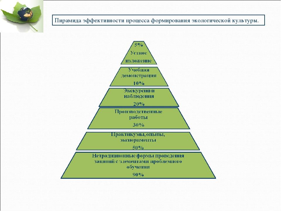 Пирамида эффективности процесса формирования экологической культуры.