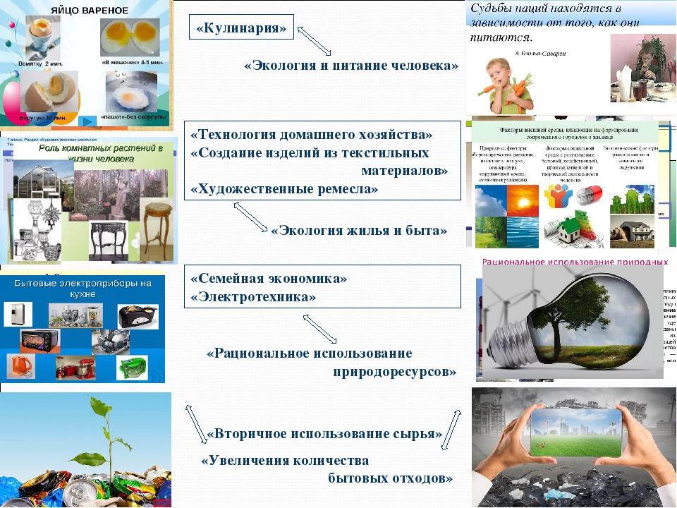 «Экология и питание человека» «Кулинария» «Экология жилья и быта» «Технология...