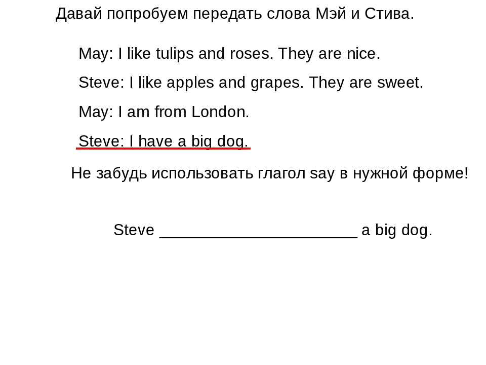May: I like tulips and roses. They are nice. Steve: I like apples and grapes....