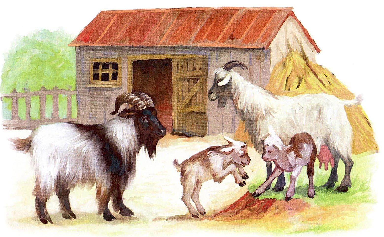 Домашние животные с детьми картинки для детей дошкольного возраста