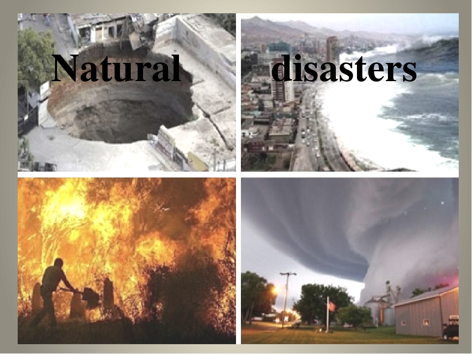 essay tsunami natural disaster