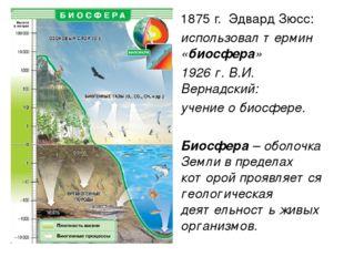 1875 г. Эдвард Зюсс: использовал термин «биосфера» 1926 г. В.И. Вернадский: у