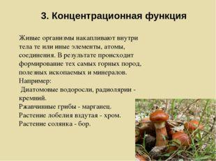 3. Концентрационная функция Живые организмы накапливают внутри тела те или ин