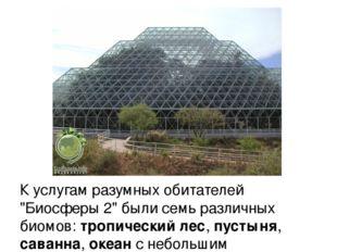 """К услугам разумных обитателей """"Биосферы 2"""" были семь различных биомов: тропич"""