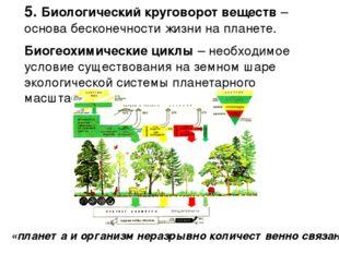 5. Биологический круговорот веществ – основа бесконечности жизни на планете.