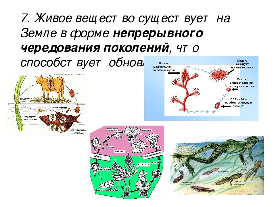 7. Живое вещество существует на Земле в форме непрерывного чередования поколе...