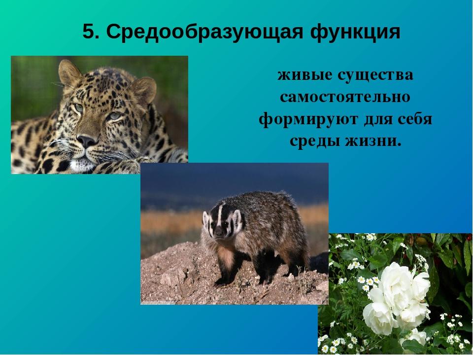5. Средообразующая функция живые существа самостоятельно формируют для себя с...
