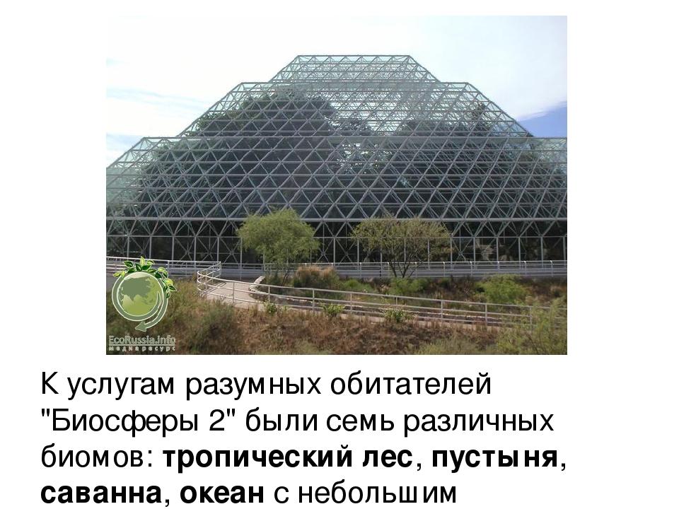"""К услугам разумных обитателей """"Биосферы 2"""" были семь различных биомов: тропич..."""
