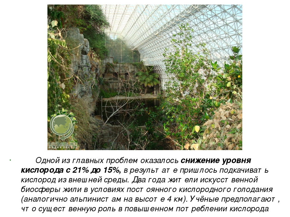 Одной из главных проблем оказалось снижение уровня кислорода с 21% до 15%, в...