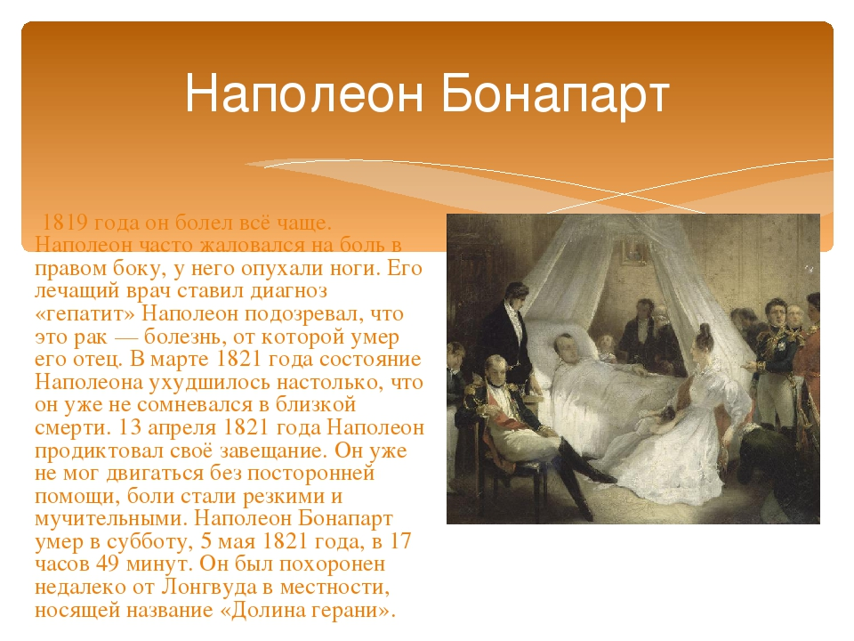 napoleon bonaparte biography essay Napoleon bonaparte napoleon bonaparte was a military and political leader of france who made significant mistakes leading him to his downfall napoleon was a man obsessed with power and wealth.
