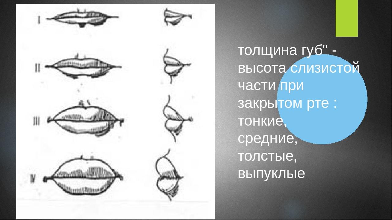 """толщина губ"""" - высота слизистой части при закрытом рте : тонкие, средние, тол..."""