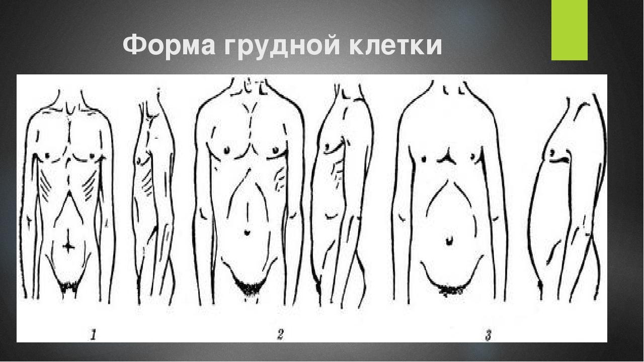 Форма грудной клетки