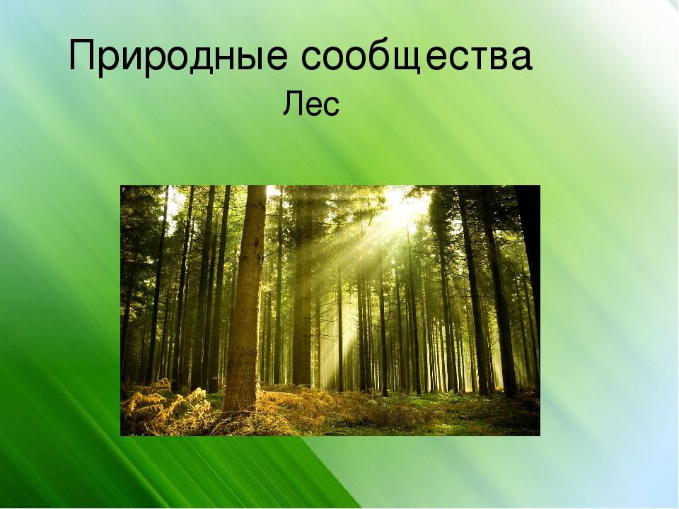 Природное сообщество в картинке