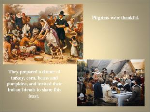 Pilgrims were thankful. They prepared a dinner of turkey, corn, beans and pum