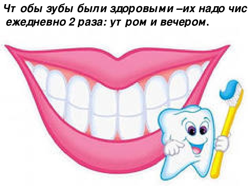 Чтобы зубы были здоровыми –их надо чистить ежедневно 2 раза: утром и вечером.