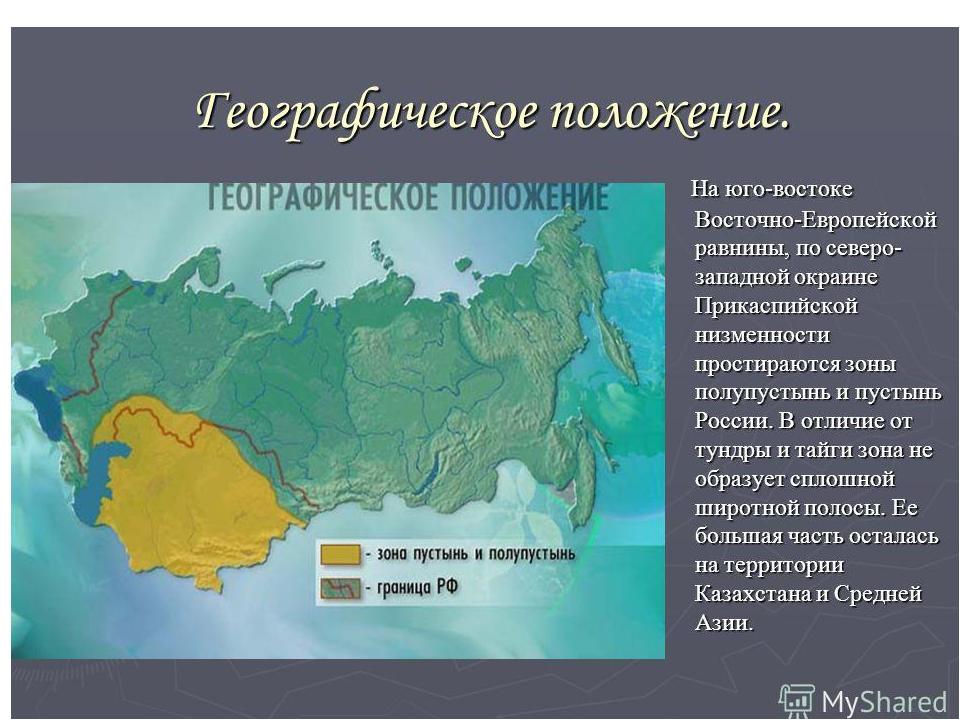 Медведь флаг россии обои мнение