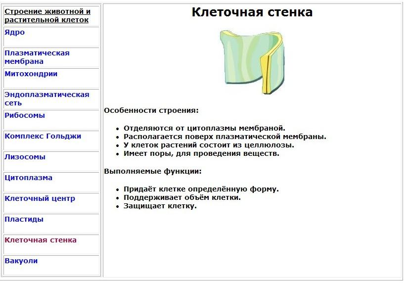 hello_html_m794b1c92.jpg