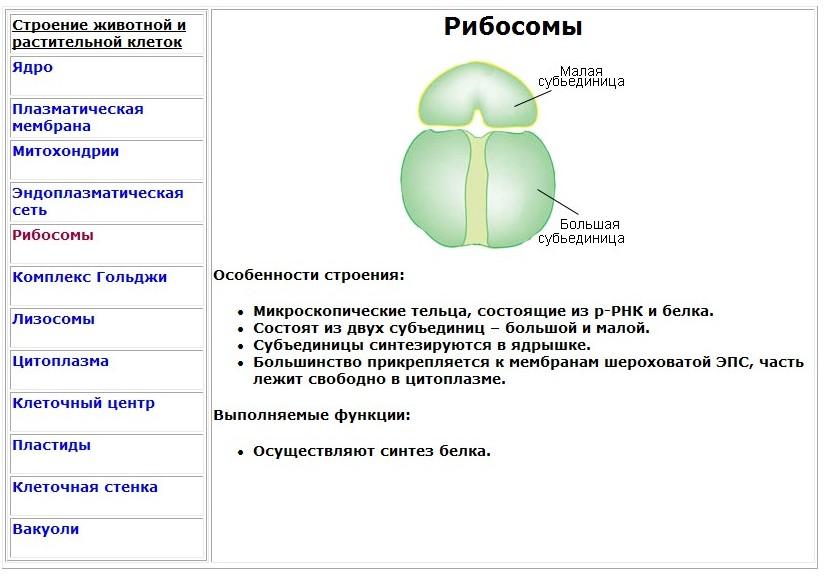 hello_html_mf0d1f71.jpg