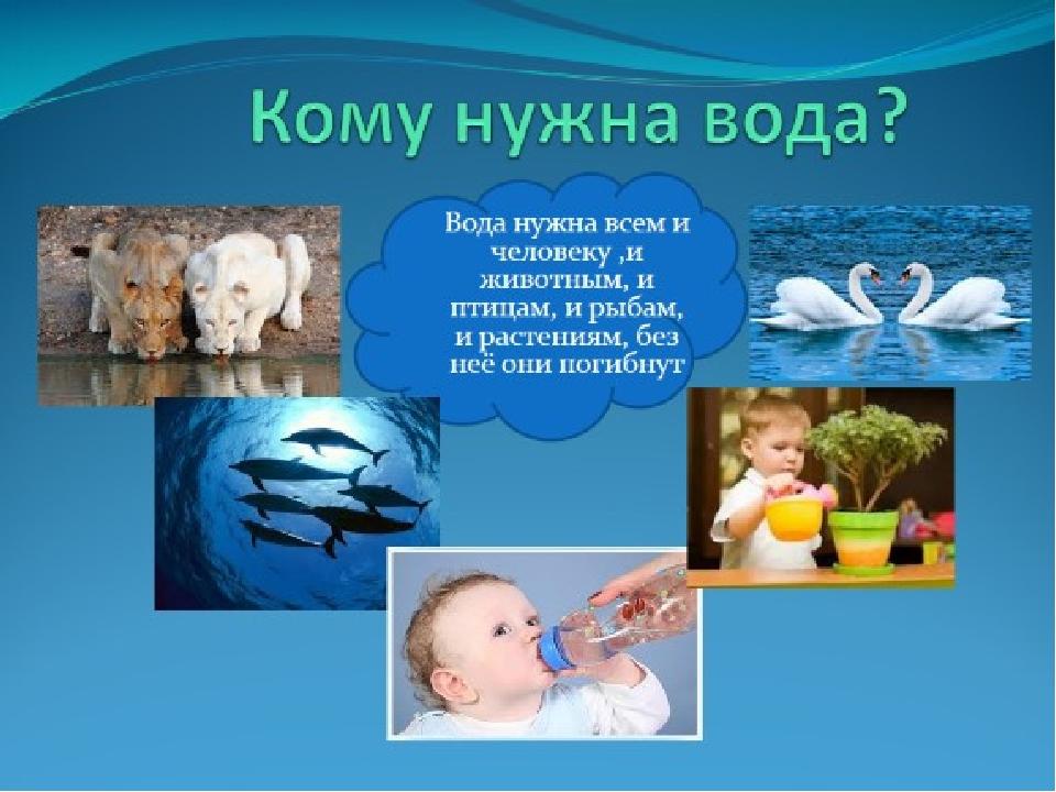 Картинки о воде для детей 2 класс