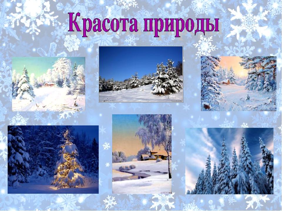 Картинки зима для уголка природы в начальной школе