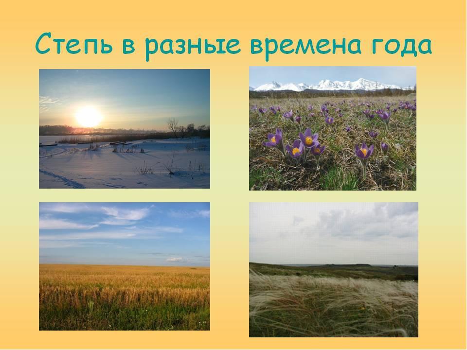года картинки времена в разные степь