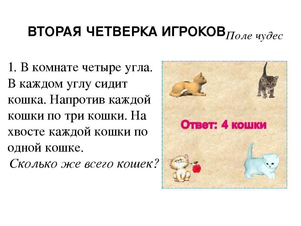 загадка про кошек в комнате услугам клиентов утренний