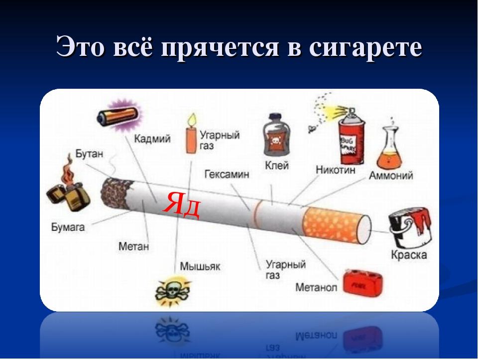 породы картинки что прячется в сигарете зимней