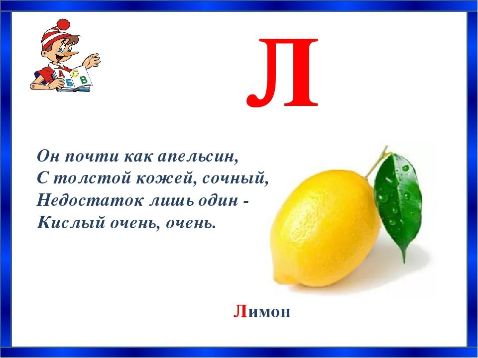 азбука загадок о растениях с картинками изображением государственных символов