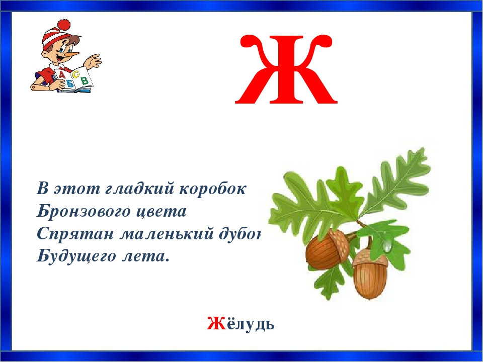 азбука загадок о растениях с картинками иконах чаще всего