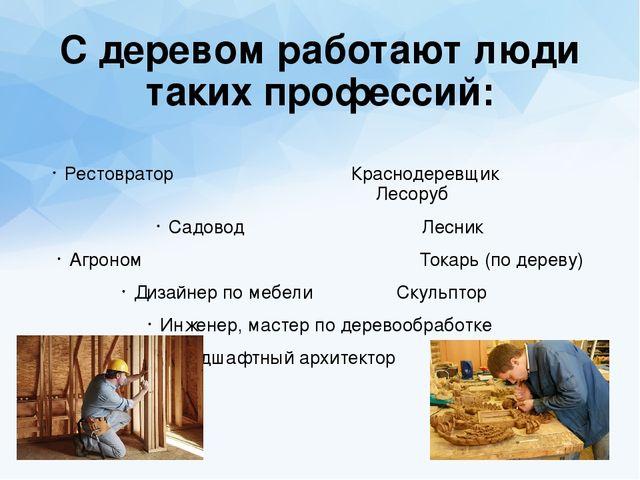 Профессии связанные с древесиной презентация