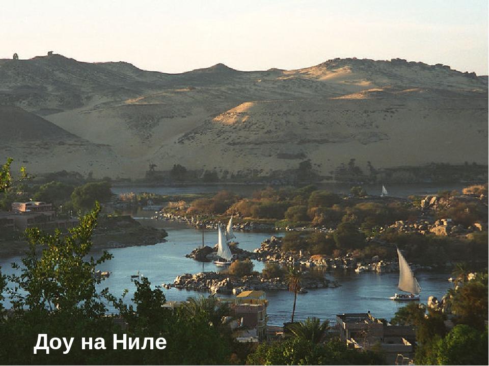 * Доу на Ниле