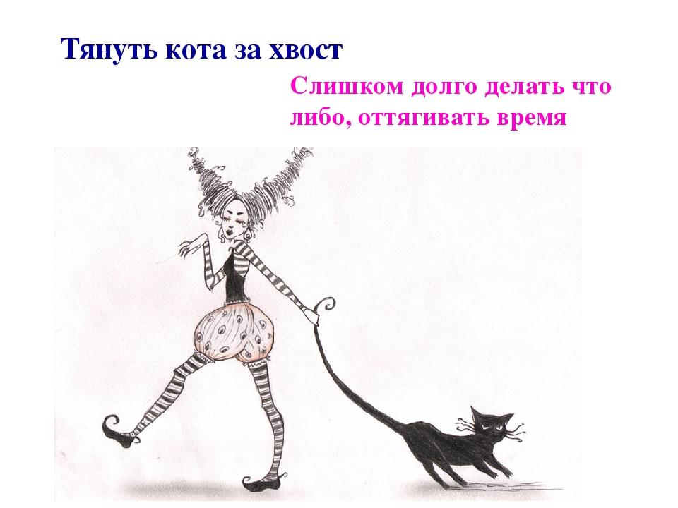 картинки тянуть кота