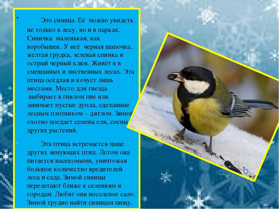 Рассказы о птицах в картинках
