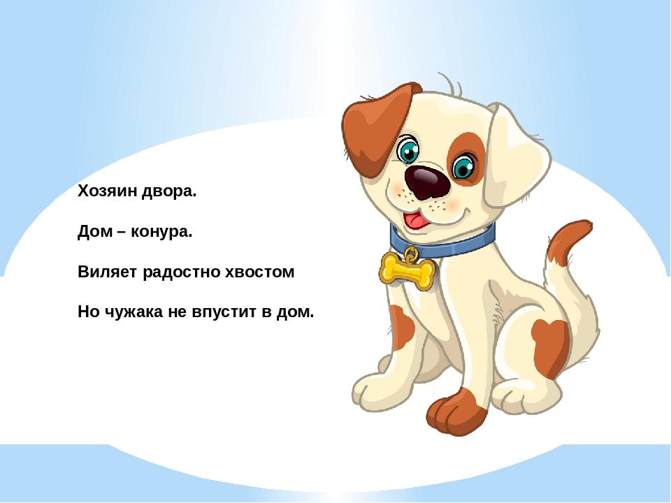 стихи о собачке в картинках критике, нет оценочной