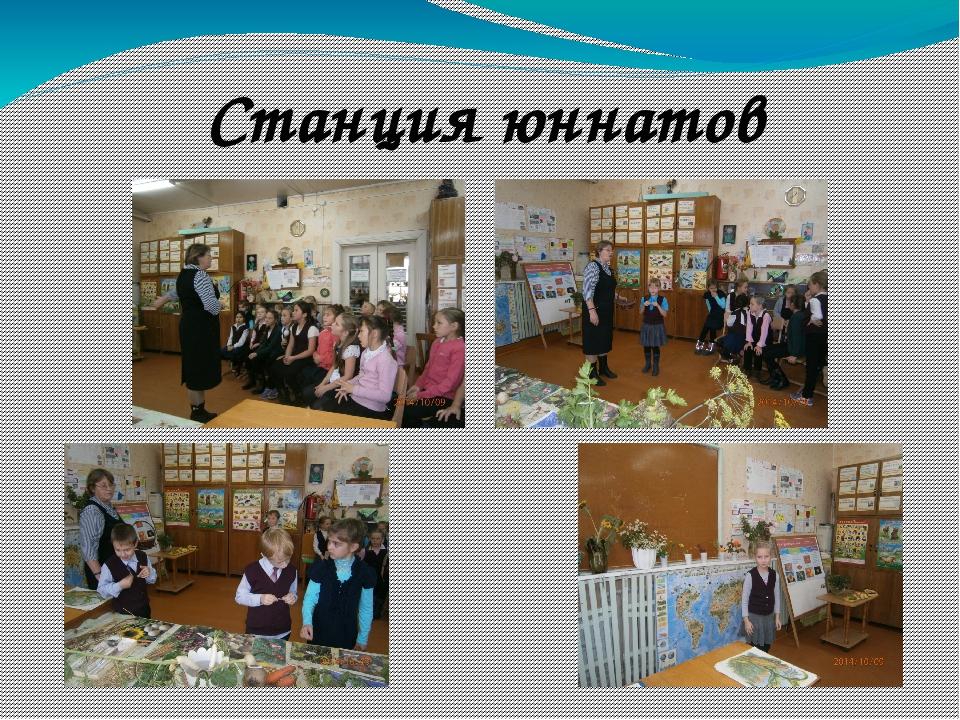 Станция юннатов